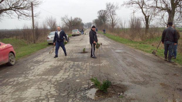 <em>Hír szerkesztése</em> Faültetéssel tiltakoztak a gépkocsivezetők a rossz út miatt