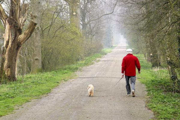<em>Hír szerkesztése</em> Mégsem kell lakhelyelhagyási nyilatkozat a testmozgáshoz és kutyasétáltatáshoz