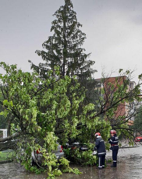 <em>Hír szerkesztése</em> Fákat csavart ki a vihar, autók rongálódtak meg