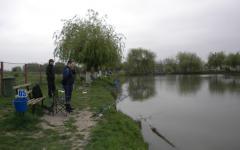 <em>Hír szerkesztése</em> Aradi és gyulai horgokra haraptak a halak [AUDIÓ, VIDEÓ]