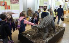 <em>Hír szerkesztése</em> FRISSÍTVE – Megnyílt a dinókiállítás