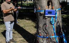 <em>Hír szerkesztése</em> Pikáns: faszkennert használ az önkormányzat