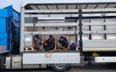 <em>Hír szerkesztése</em> Több mint 40 migránst találtak a nagylaki határátkelőkön