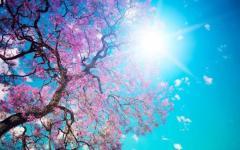 <em>Hír szerkesztése</em> Egy-két hűvösebb nap után ragyogó időnk lesz