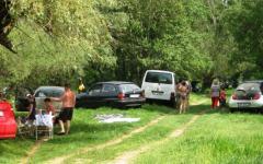 <em>Hír szerkesztése</em> Betiltották a piknikezést az Arad környéki erdőkben