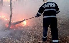<em>Hír szerkesztése</em> Harminc hektáron égett a tűz Kishalmágy mellett